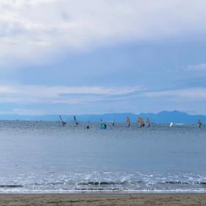 逗子葉山の海