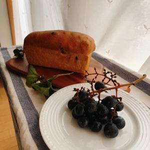 有機レーズンぶどう食パンレッスン始まってます
