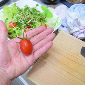 立派なトマトがお安いの