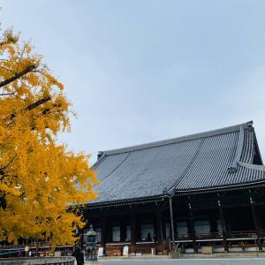 西本願寺・京都駅ビル・九条ネギ焼