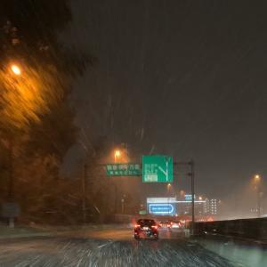 広島も雪が降ってきました