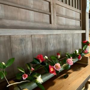 両延神社 拝殿に活けられたお花たち