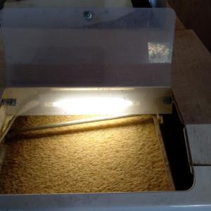 風乾燥米の籾摺りスタート