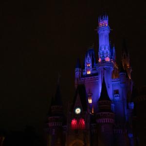 ディズニー・ライト・ザ・ナイト
