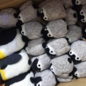 junjunさん!のペンギン到着