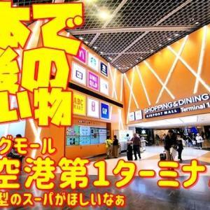 【世界の遊び場】成田空港第1ターミナルのショッピングモールで日本最後のお買い物を楽しむw