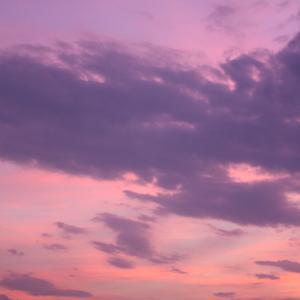 夢のような色を求めて