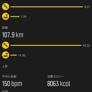 一月の走行距離
