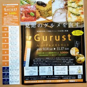 グルストの煮込みハンバーグ