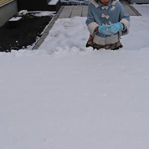 我が家で雪合戦