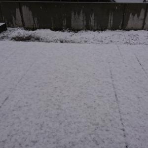 雪の札幌と、鈴木知事の緊急記者会見