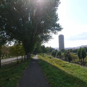 会議と農試公園