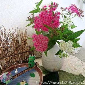 庭で咲く花を玄関とリビングに迎えて・・・♪