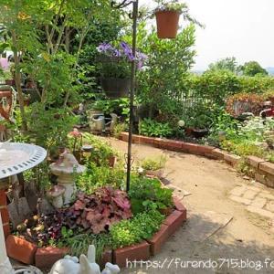 ガーデン改造後・花壇が広くなりました・・・♪