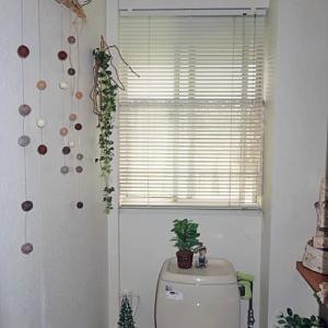 一階から二階トイレに移動してプチ模様替え・・・♪