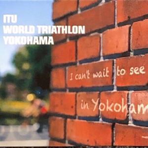 I couldn't meet you in Yokohama.