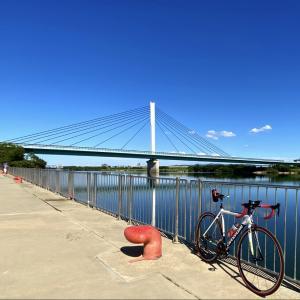 秋の淀川ライド