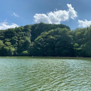 亀山ダム バス釣り
