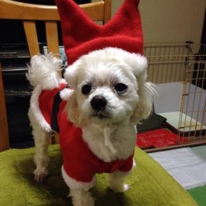クリスマスはまだかな?