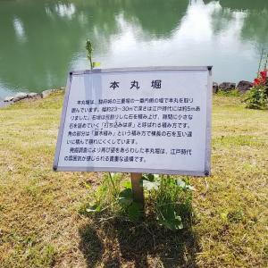 駿府城公園 5/23③☆