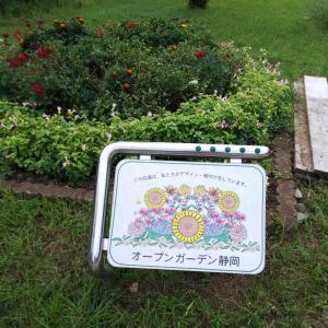 たまには(笑)駿府城公園で森林浴②☆