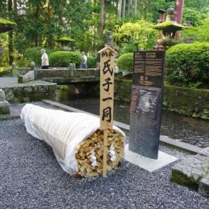 浅間神社と富士ビューホテル(8/24)