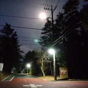 未だ暗い朝の富士山(2/24)