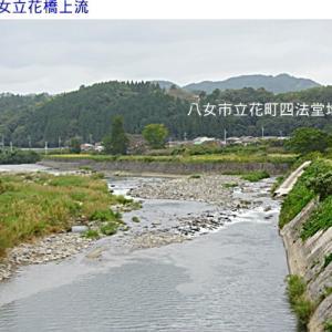 矢部川&八女立花橋付近の水量