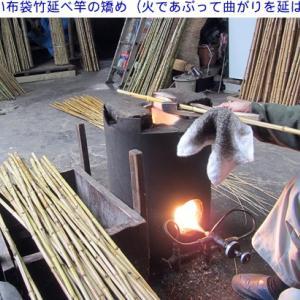 布袋竹の矯め