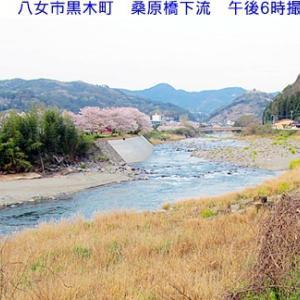 矢部川 桑原橋下流の風景