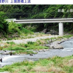 矢部川&星野川鮎解禁の釣果