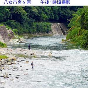 星野川の水量と風景