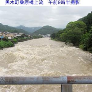 矢部川&星野川は大荒れです
