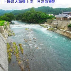星野川夕方の水量