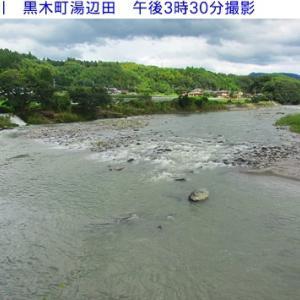矢部川&星野川の水量