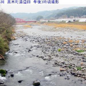 矢部川は河川の水量が落ち着いてきました