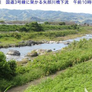 矢部川下流の水量