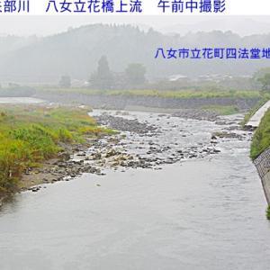 鮎が下流に落ちるための雨を待っています