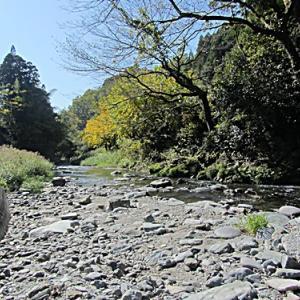横山川の効用