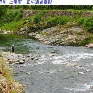 星野川は渓流釣りで賑わっています