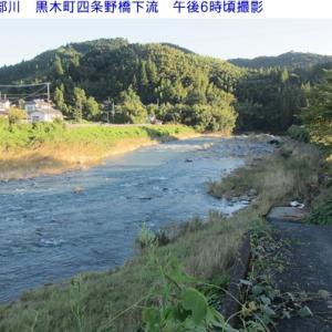 矢部川&星野川夕方の水量