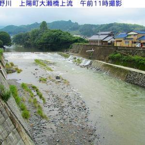 星野川は今朝の雨で濁っています