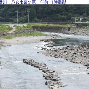 星野川の水量と釣果