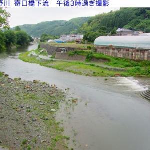 星野川朝の水量&風景