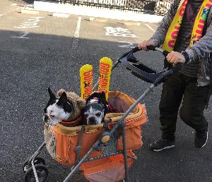 2019岡山マラソン
