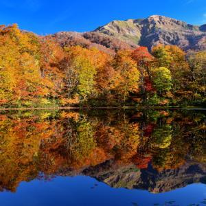 まるで紅葉の美しさを詰め込んだ宝石箱のような幻想的な秋色リフレクション