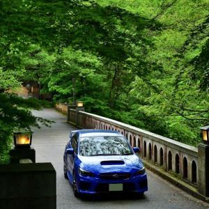 新緑の鶴仙渓(かくせんけい)遊歩道は、まるで翡翠のラビリンスのようなセカイ