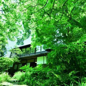 加賀藩から続く由緒ある武家屋敷「寺島蔵人邸(てらしまくらんどてい)」に広がる新緑のセカイ