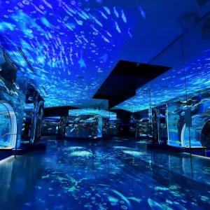 石川県が誇る日本海側最大級の水族館「のとじま水族館」に行ってまいりました~(*'▽')♪