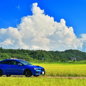 夏の名残を感じる入道雲の空に広がる秋の訪れを感じさせる広大な北陸の田園風景